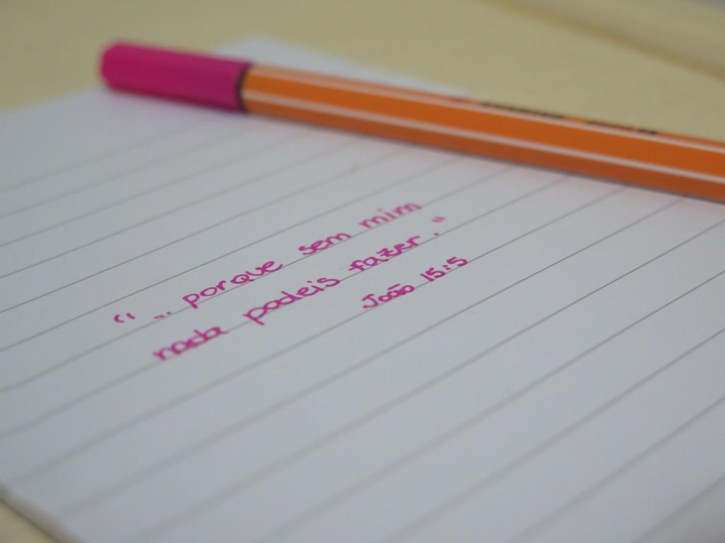 blog caneta